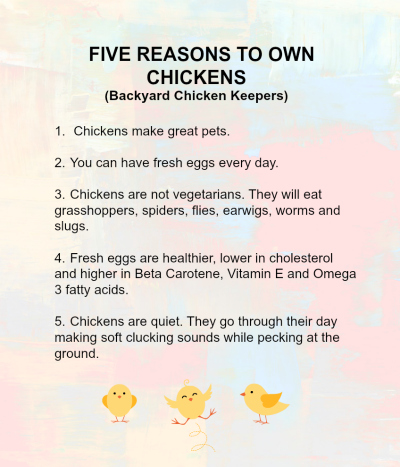 Chicken benefits