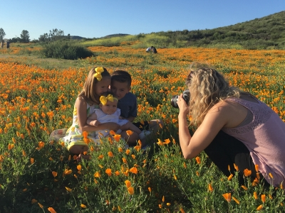Super Bloom Photos